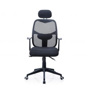 Ergo Executive High-Back Chair